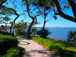 Sarasota Bay Club condos for sale