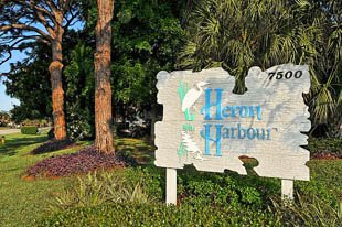 Heron Harbour