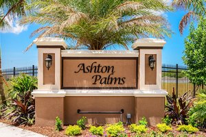 Ashton Palms Community