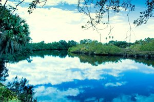 Braden River