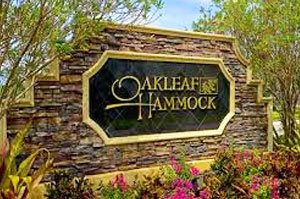 Oakleaf Hammock Homes for Sale