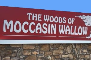 Woods of Moccasin Wallow Homes for Sale