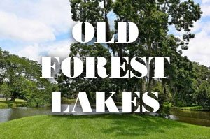 Old Forest Lakes Homes for Sale
