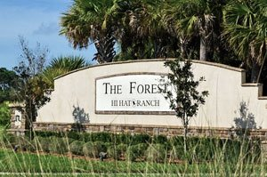 The Forest at Hi Hat Ranch Homes for Sale