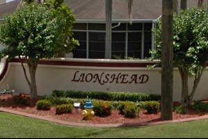 Lionshead Homes for Sale