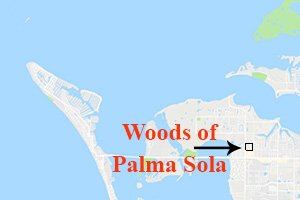 Woods of Palma Sola Homes for Sale