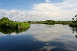 Myakka River Trails Homes for Sale