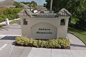 Auburn Hammocks Homes for Sale